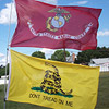 Gadsden and USMC flags